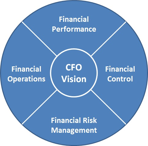 chief financial officer  The Integral Role of the CFO
